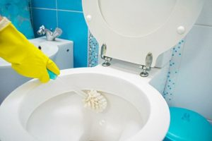 11-toilet-cleaning-tips-for-2020